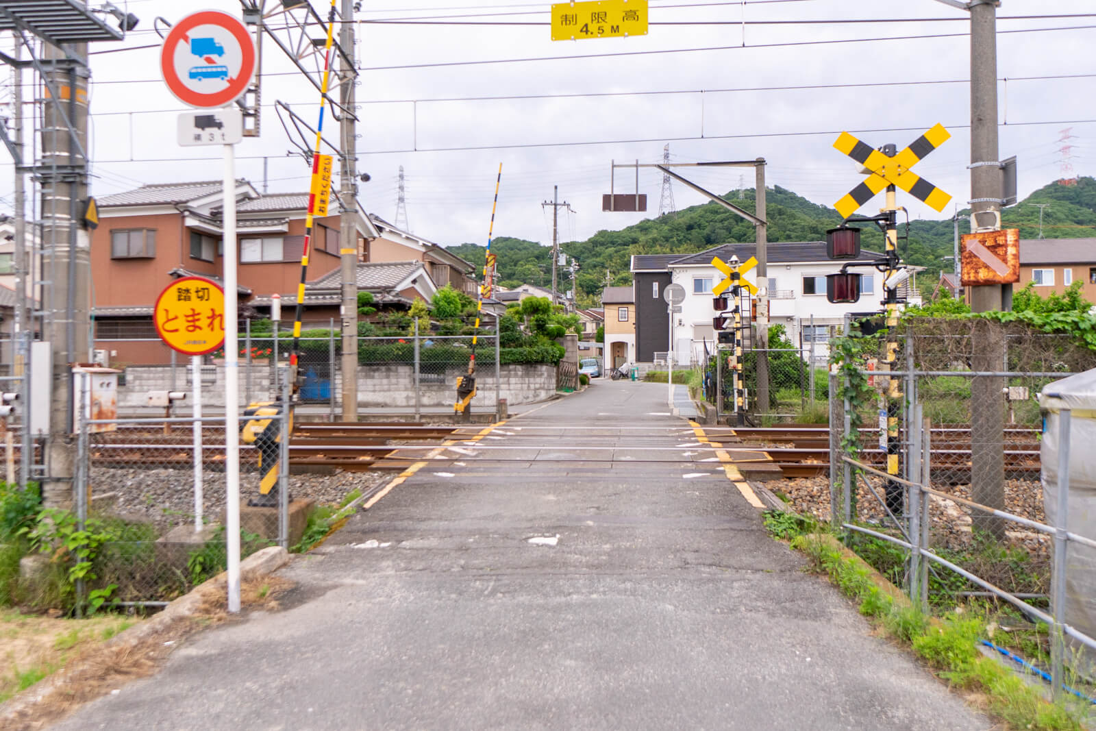 kuraji-61 (1)